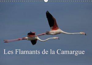 Les Flamants de la Camargue (Calendrier mural 2015 DIN A3 horizo