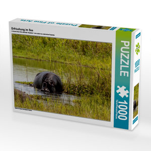 Erfrischung im See 1000 Teile Puzzle quer