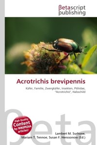 Acrotrichis brevipennis
