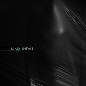 Unfall (Vinyl)