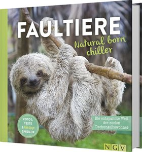 Faultiere-Natural born chiller
