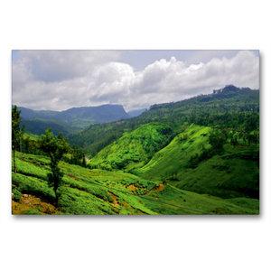 Premium Textil-Leinwand 90 cm x 60 cm quer Sri Lanka Hochland