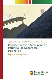 Caracterização e Simulação do Potencial da Separação Magnética