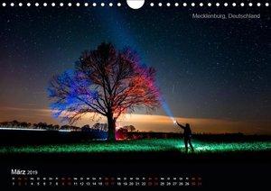 Lichtkunst - Weltreise Markante Bäume