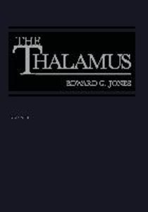 The Thalamus