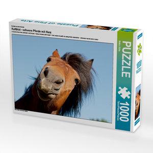 Ein Motiv aus dem Kalender Kaltblut - schwere Pferde mit Herz 10