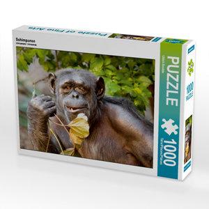 Schimpanse 1000 Teile Puzzle quer
