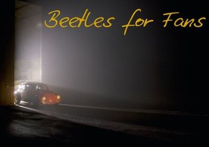 Beetles for Fans (Poster Book DIN A4 Landscape)