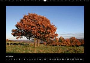 Eifel-Landschaften (Wandkalender immerwährend DIN A2 quer)