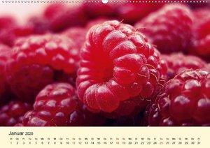 Himbeeren. Köstliche und gesunde Schönheiten