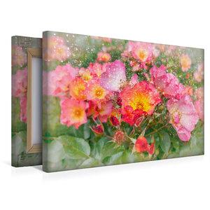 Premium Textil-Leinwand 45 cm x 30 cm quer Romantische Heckenros