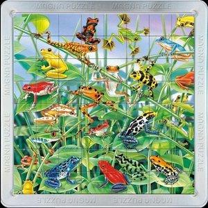 3D Magna Puzzle Frösche 64 Teile