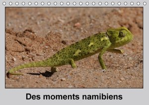 Wolf, G: Des Moments Namibiens / Fr-Version