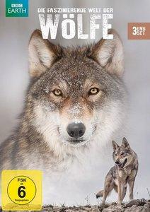 Die faszinierende Welt der Wölfe