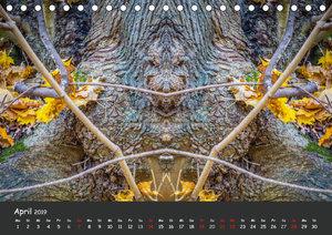 Baumgeister, Gesichter des Waldes (Tischkalender 2019 DIN A5 que