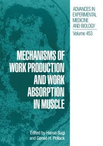Mechanisms of Work Production and Work Absorption in Muscle