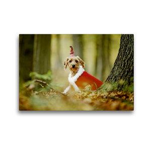 Premium Textil-Leinwand 45 cm x 30 cm quer Weihnachtswichtel