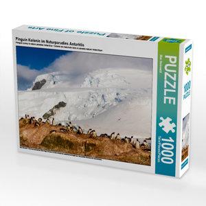 Pinguin Kolonie im Naturparadies Antarktis 1000 Teile Puzzle que