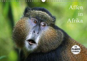 Affen in Afrika (Wandkalender 2019 DIN A3 quer)