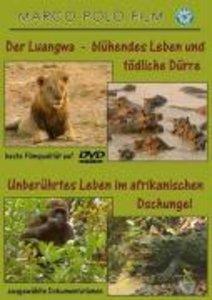 Luangwa/afrikanischer Dschungel