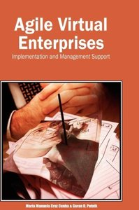 Agile Virtual Enterprises: Implementation and Management Support