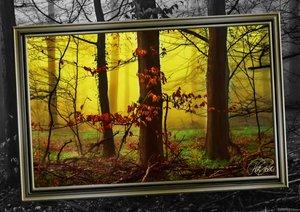 Alles im Rahmen - Sonne im Wald (Posterbuch DIN A3 quer)