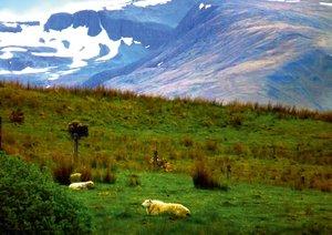 Scotland - Highlands (Posterbuch DIN A3 quer)