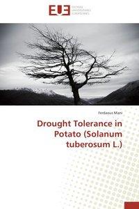 Drought Tolerance in Potato (Solanum tuberosum L.)