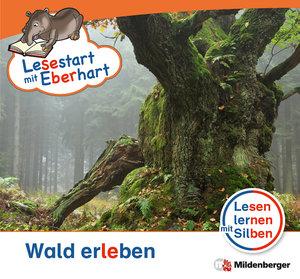 Lesestart mit Eberhart - Wald erleben