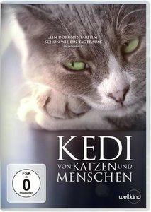 Kedi-Von Katzen und Menschen