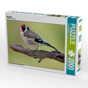 Stieglitz 2000 Teile Puzzle quer