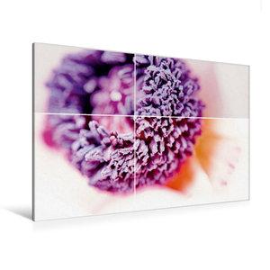 Premium Textil-Leinwand 120 cm x 80 cm quer Lila Traum