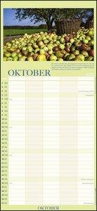 100jähriger Kalender Familienplaner Kalender 2020