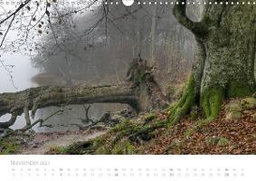 Zauberhafte Schlei (Wandkalender 2021 DIN A3 quer) - zum Schließen ins Bild klicken