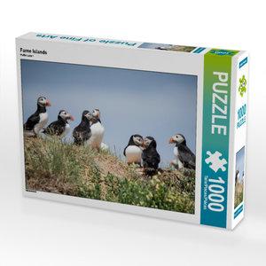 CALVENDO Puzzle Farne Islands 1000 Teile Lege-Größe 64 x 48 cm F