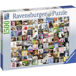 99 Katzen (Puzzle)