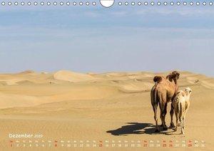 Unterwegs in der Taklamakan Wüste (Wandkalender 2019 DIN A4 quer