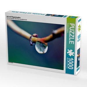 Ast mit Regentropfen 1000 Teile Puzzle quer