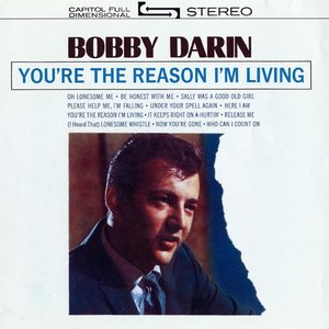 You\'re The Reason I\'m Living (LP)