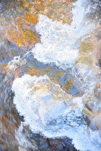 Premium Textil-Leinwand 30 cm x 45 cm hoch Schwarzwald