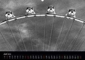 Las Vegas - Schwarzweiß (Wandkalender 2019 DIN A2 quer)