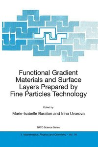 Functional Gradient Materials and Surface Layers Prepared by Fin