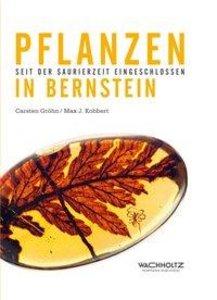 Pflanzen im Bernstein