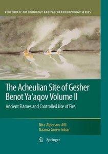The Acheulian Site of Gesher Benot Ya'agov Volume II
