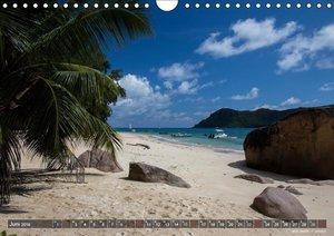 die seychellen - ganz nah am paradies (Wandkalender 2019 DIN A4