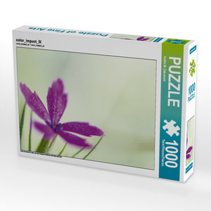 color_impact_III 1000 Teile Puzzle quer