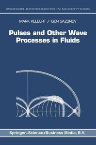 Pulses and Other Wave Processes in Fluids