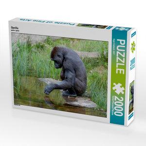 Gorilla 2000 Teile Puzzle quer
