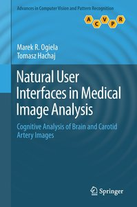 Natural User Interfaces in Medical Image Analysis
