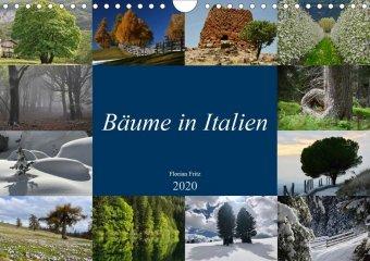 Bäume in Italien (Wandkalender 2020 DIN A4 quer) - zum Schließen ins Bild klicken